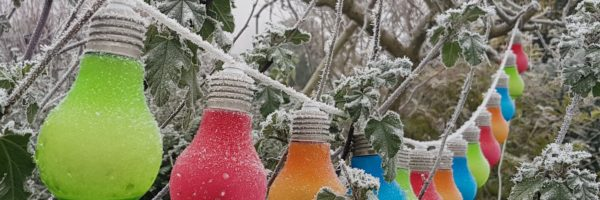 coloured light bulbs in frost